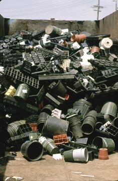 Recycling Plastic Pots & Trays