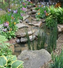 Rain Garden - Natural Ways