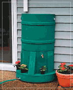 Rainwater Barrel
