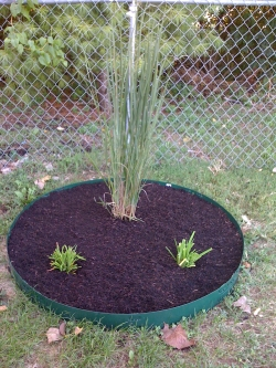 Mulch Flower Bed